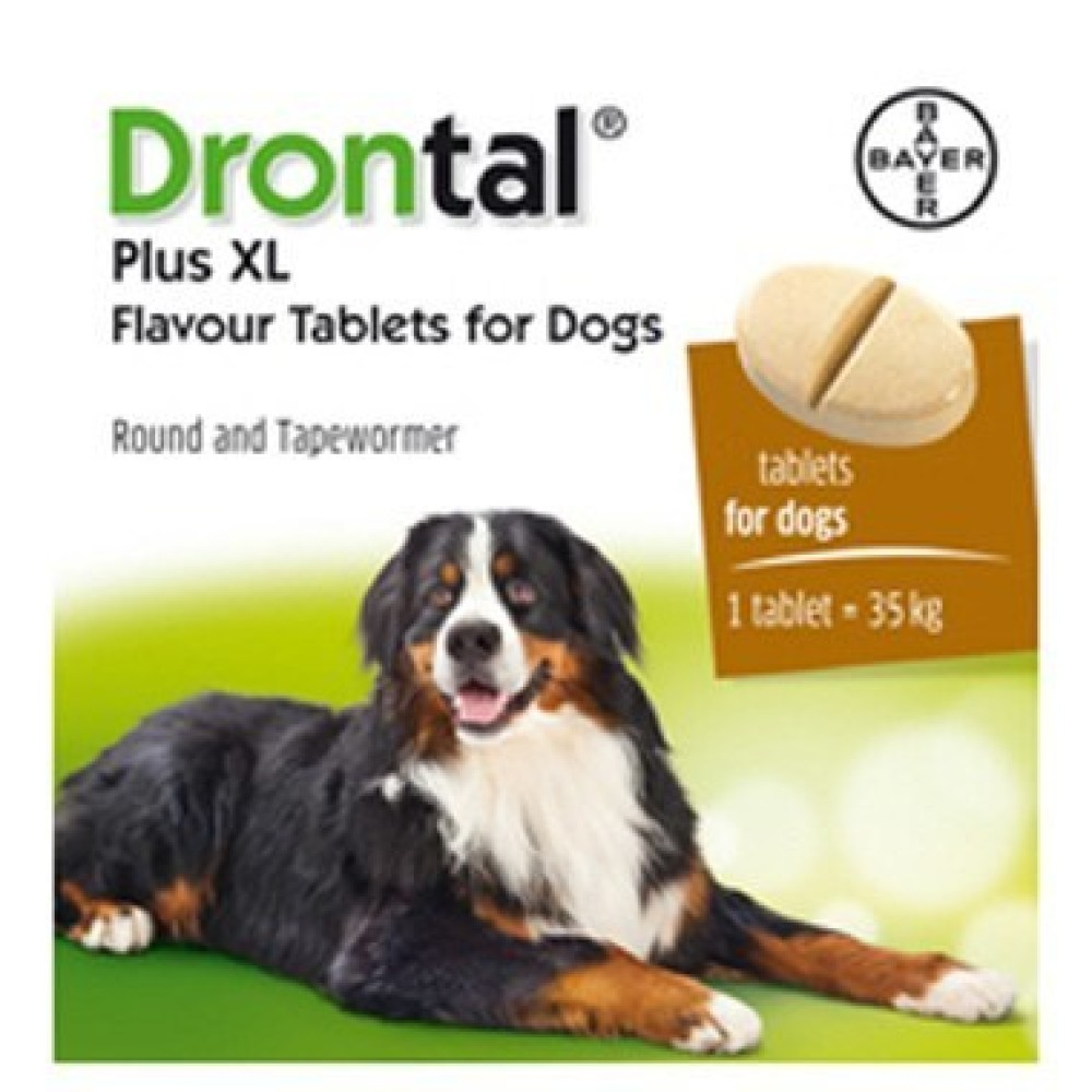 zoo/Bayer_Drontal_Plus_XL_dlja_sobak